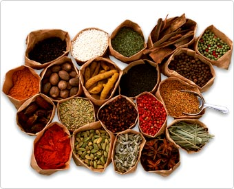 http://www.spice-research.org/program/spice_shot01.jpg